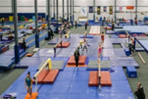 Terry Gray, Ex-U.S.A. Gymnastics Coach, Faces Charges of Lewdness With a Minor